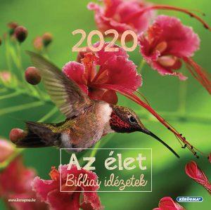 2020kockavirag